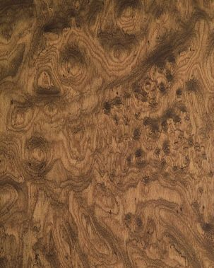 Walnut Burl Grain Veneer