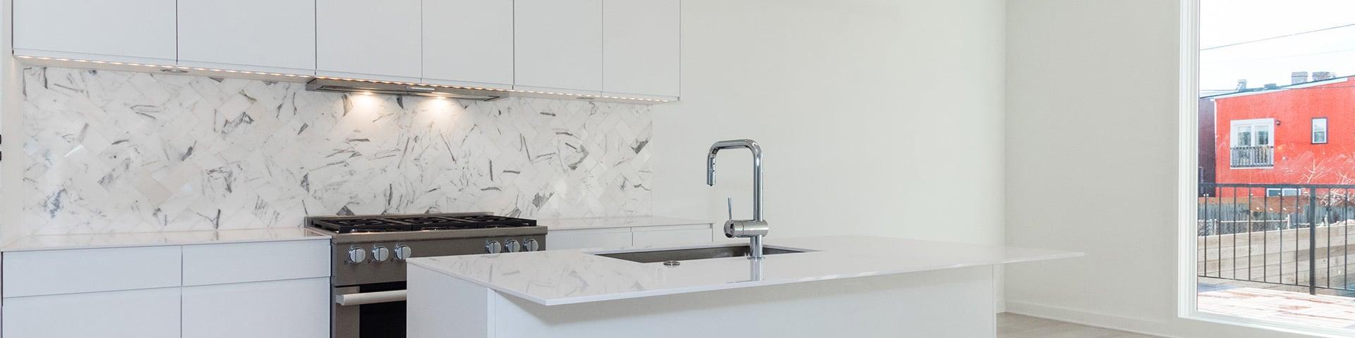 Modern Kitchen Cabinets Contemporary Frameless Rta Designer Kitchen Cabinets